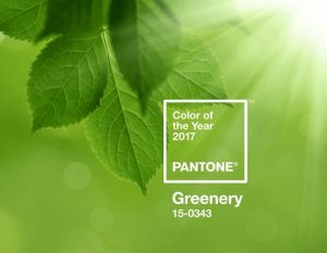 pantone-color-of-the-year-2017-greenery-15-0343-press-release-696x541-1